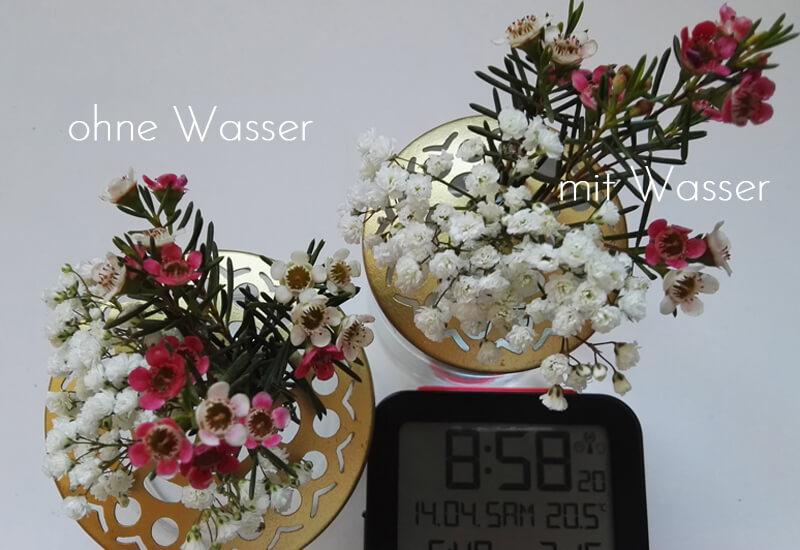 Ganz und zu Extrem Blumen als Haarschmuck? Teil 2 #TS_24